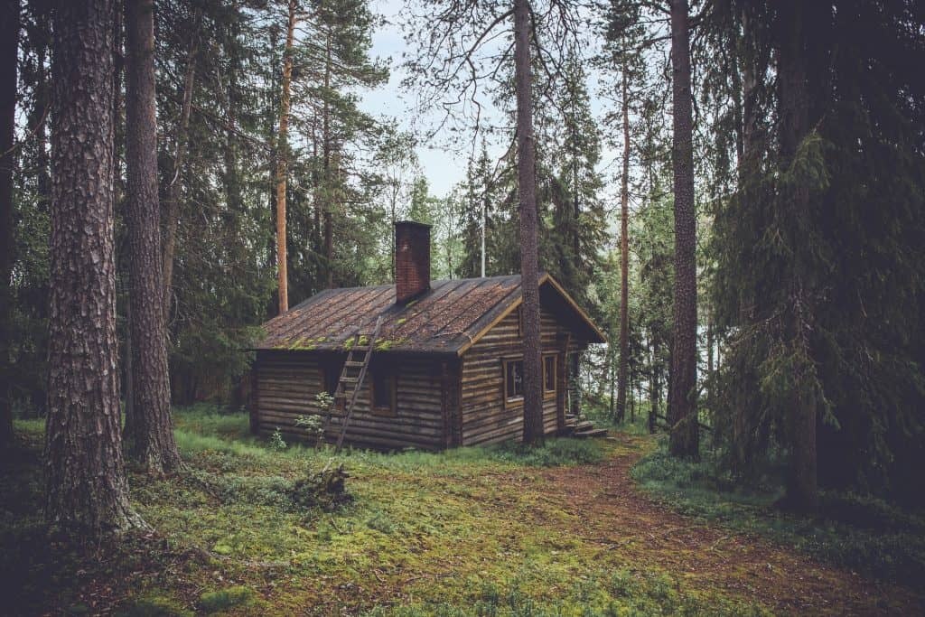 Minimalist house in the forest