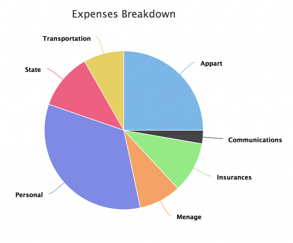 Expenses breakdown for 2018