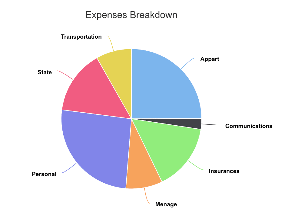 Breakdown of our 2019 Expenses