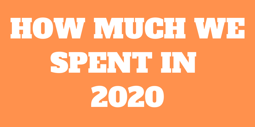 How Much We Spent in 2020 - Full Expense Report