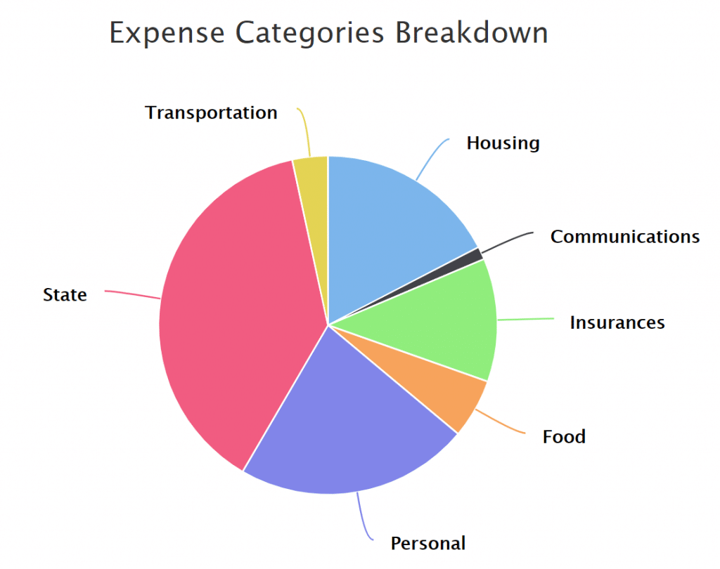 The breakdown of our expenses in 2020