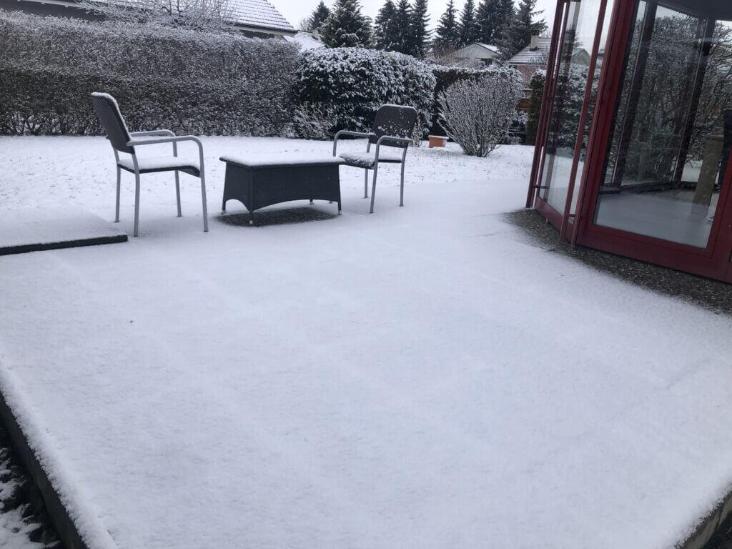 Our garden in December 2020